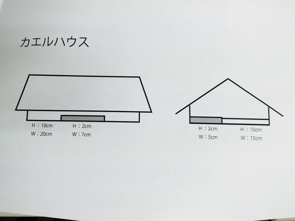 20170711 (1).jpg